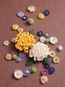 菊の花-2